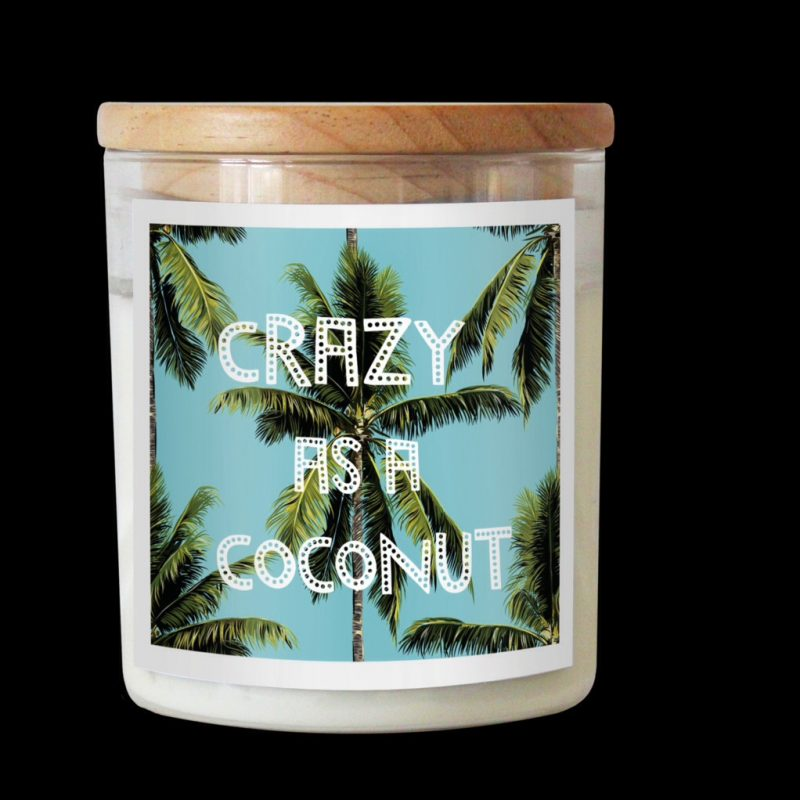 coconut and lime candle crazy as a coconut the commonfolk collective