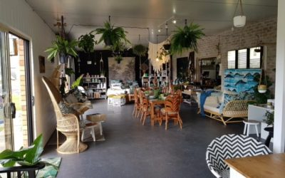 Island Collective…….Then and Now